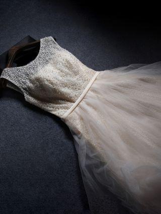 Homecoming Dress Sleeveless Round Neck Embroidery Beading Graduation Dress Gauze Stitching Short Bridesmaid Evening Dresses