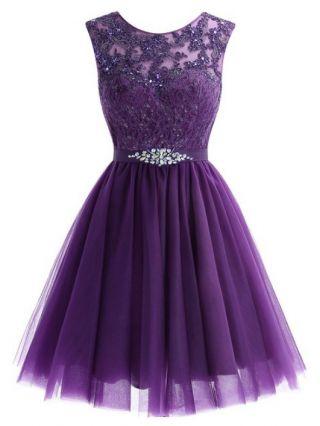 Homecoming Dress Purple Dress Lace Beading Rhinestone Round Neck Sleeveless Short Banquet Evening Dresses